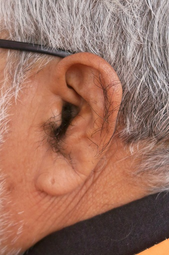 Image Of Old Indian Man With Hairy Ear And White Grey Nose Hair Needing Trimmer Trimming Cute granny goddess justine gets her hairy pussy. image of old indian man with hairy ear and white grey nose hair needing trimmer trimming