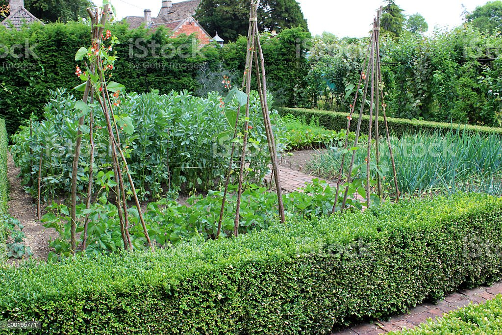 Photo showing a beautiful ornamental vegetable garden next to an...