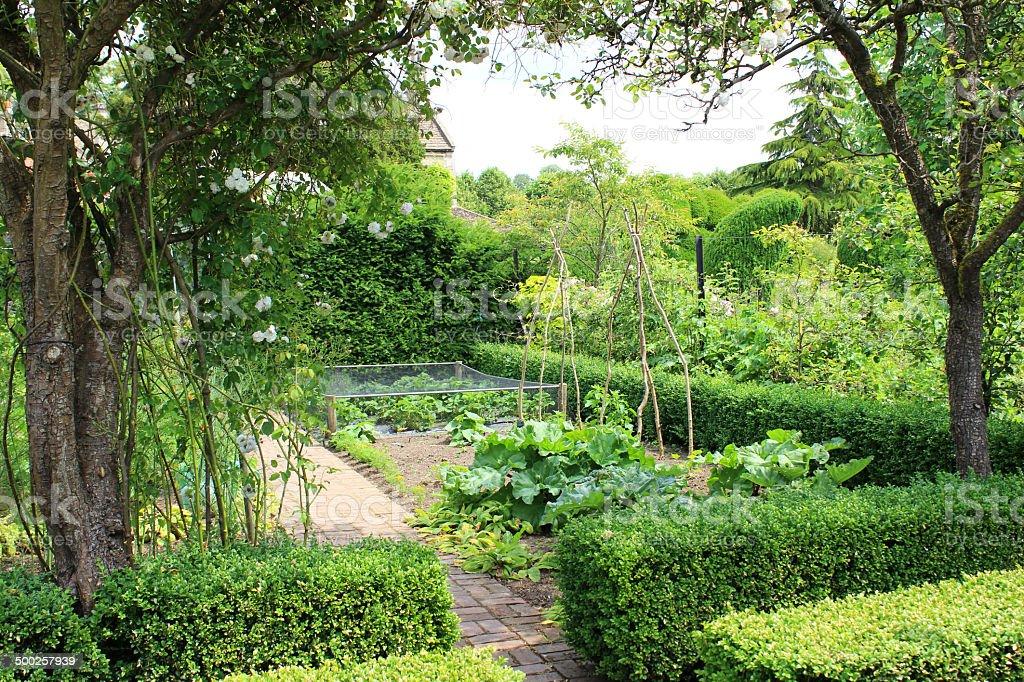Imagem de legumes de jardim ornamental/paredes horta, árvores de maçã - foto de acervo