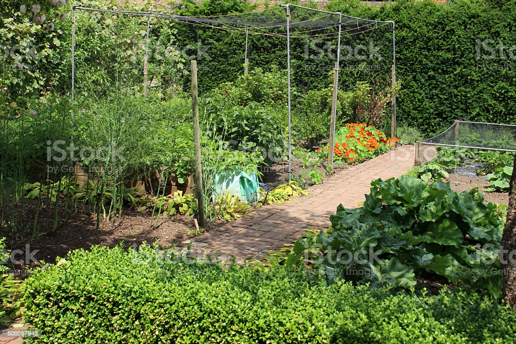 Photo showing an ornamental vegetable garden with two very different...