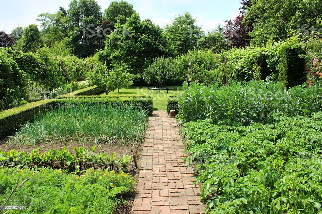 Photo showing a rather attractive ornamental vegetable garden, with a...