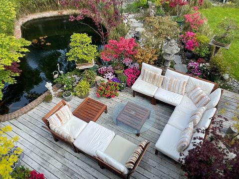 Stock photo showing ornamental Japanese-style garden with outdoor lounge area. Featuring crystal clear koi pond, whitewashed, grooved timber decking patio, Japanese bonsai maples and hardwood, cushion covered seating.