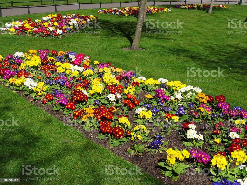 Photo libre de droit de Image Du Park Pelouse Du Jardin ...