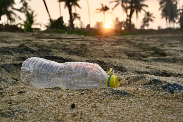 Image of plastic bottle washed up on sandy beach with tropical palm trees and sunrise / sunset,concept photo for plastic recycling litter rubbish with plastic little rubbish, littering the sand instead of being recycled on dirty beach holiday vacation stock photo
