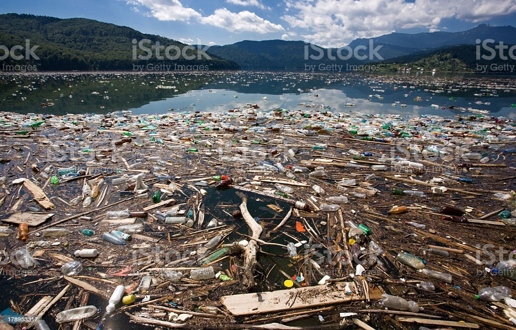 Image of pollution in a stream royalty-free stock photo
