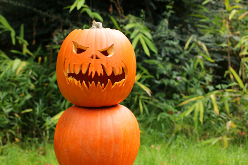 Image of pumpkin man, three orange gourds stacked to make 'snowman', Halloween face Jack O'Lantern outdoors on lawn