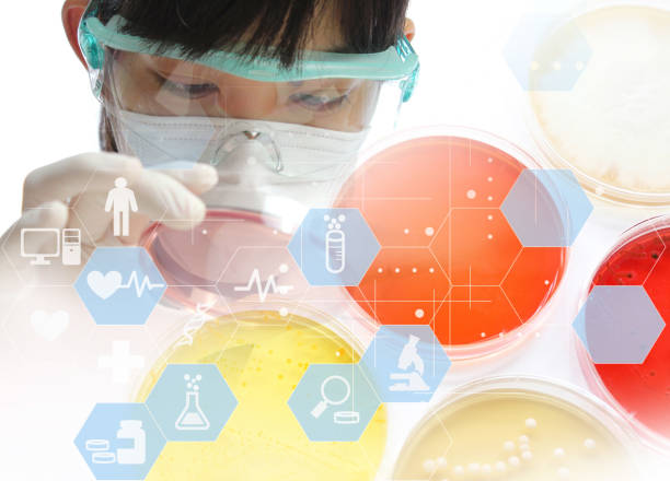 Image of research worker at the lab Image of research worker at the lab microbiologist stock pictures, royalty-free photos & images