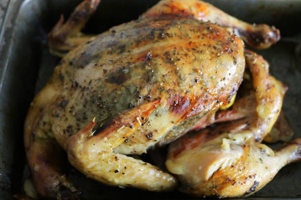 Image of roasting roast chicken cooking in kitchen oven under the grill in non sticky baking tray and ready to eat, Sunday roast dinner with crispy skin, herb stuffing in chicken stock photo