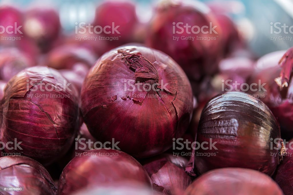 Image of several red onion stock photo