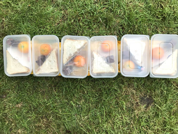 Image of six lunch boxes in a row lined up on the grass, white sliced bread sandwiches, crisp packets, chocolate squares and oranges stock photo