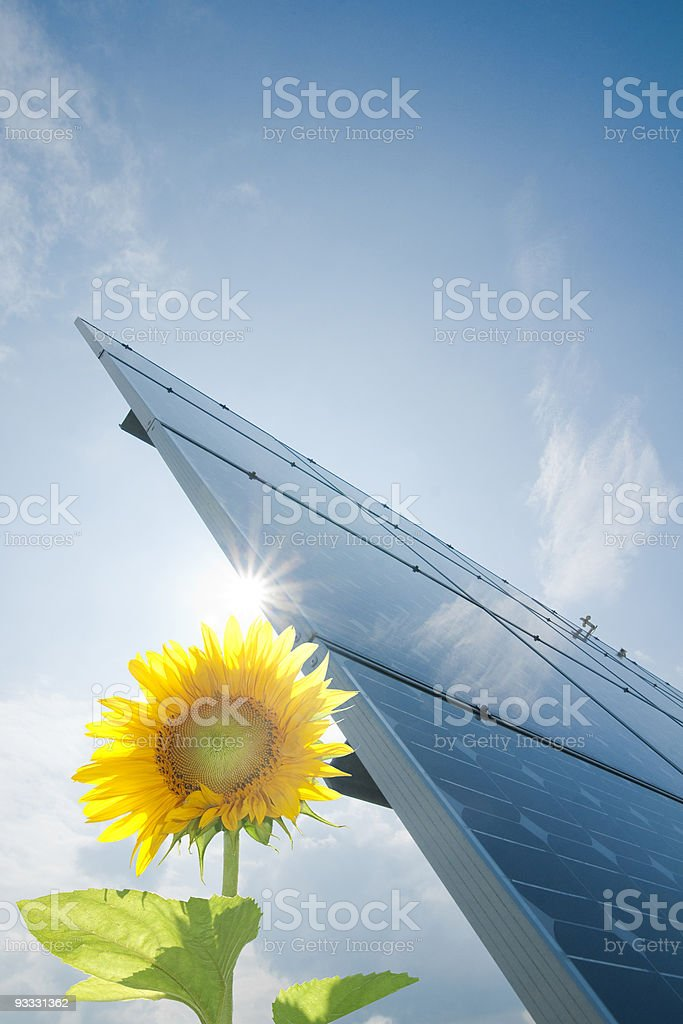 Image of solar panel and yellow flower representing energy royalty-free stock photo