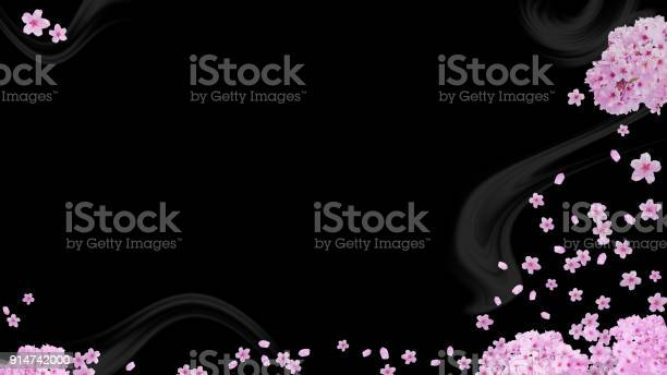 Image of spring cherry blossoms and the petals background picture id914742000?b=1&k=6&m=914742000&s=612x612&h=g zsripnaqas5o2mhzd6u3i4ysk1jt1sc7 egddlhws=