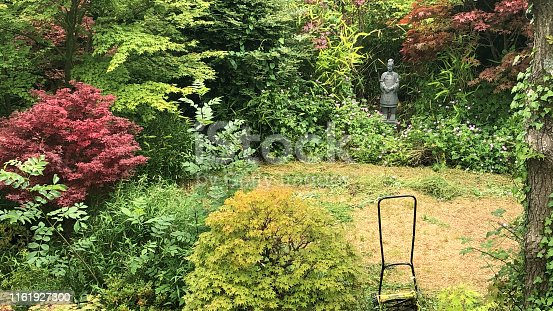 Stock photo of sunny shady landscaped back garden with dried brown lawn grass patches of moss after hot summer drought and mowing with push lawnmower and strimmer, cut mown dying dead patchy grass, overgrown lawn care needing watering, weed and feed revive