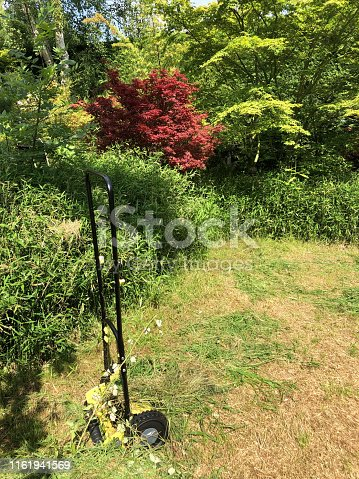 Stock photo of sunny shady landscaped back garden with dried brown lawn grass patches of moss after hot summer drought, dying dead patchy grass, lawn care needing watering, weed and feed, how to repair and revive dead lawn grass photo, trees, shrubs, maples