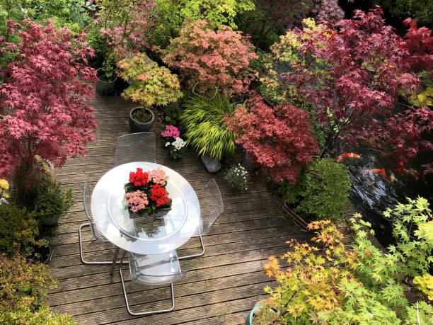 Bild von sonnigen Sommer Hinterhof Garten Deck Holz, gerillte Holzdeck von oben, Kalanchoe Blumen auf Glas Terrasse Tisch und Plexiglas Stühle, Koi Teich von Koi Karpfen Fisch umgeben von Bonsai-Baum japanische Ahorne, landschaftlich orientalische Zen-Pfl – Foto