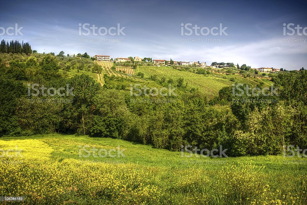 image of typical tuscan landscape royalty-free stock photo
