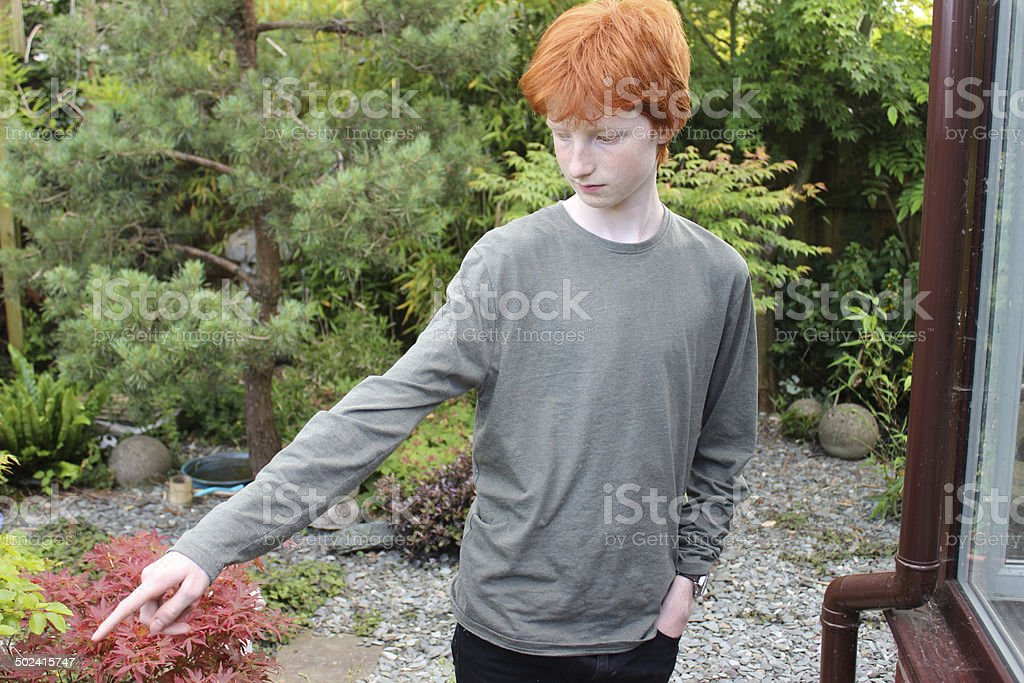 Image of young teenage boy pointing with finger in garden stock photo