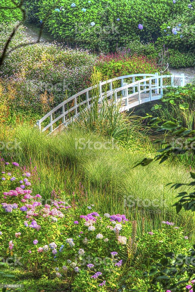 hdr image giardini decorati ponte valle di alberi e da