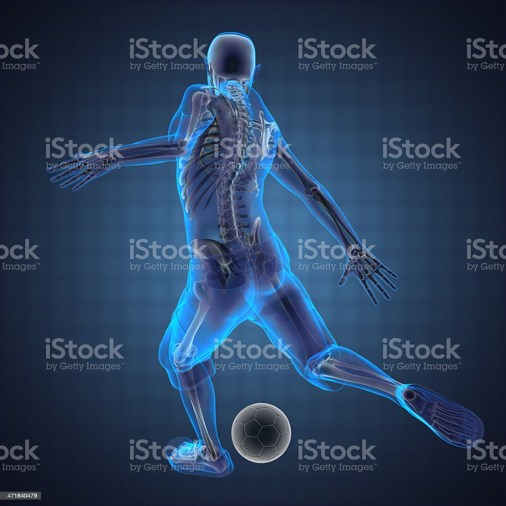 3D image showing skeleton of soccer player  stock photo