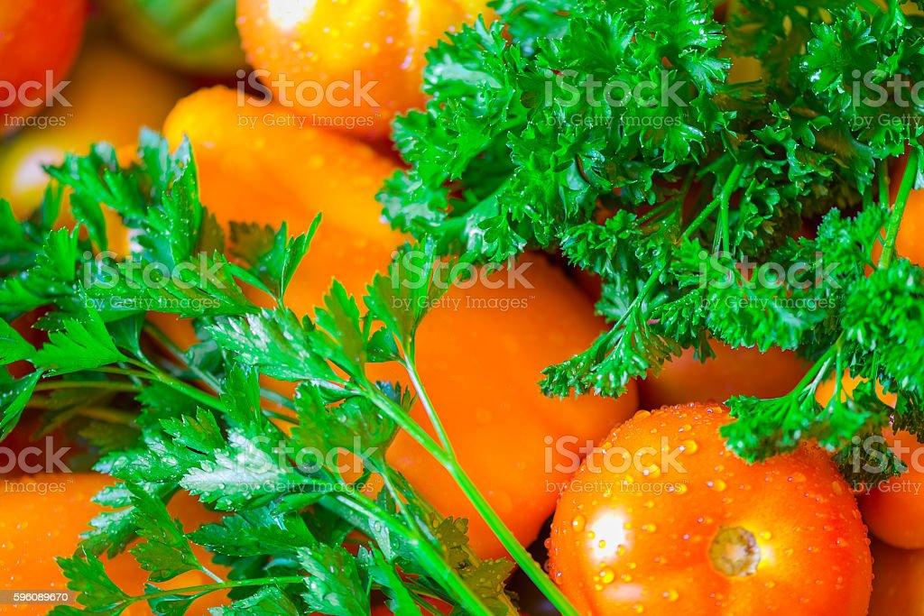 Image still life tomato, pepper , parsley harvest royalty-free stock photo