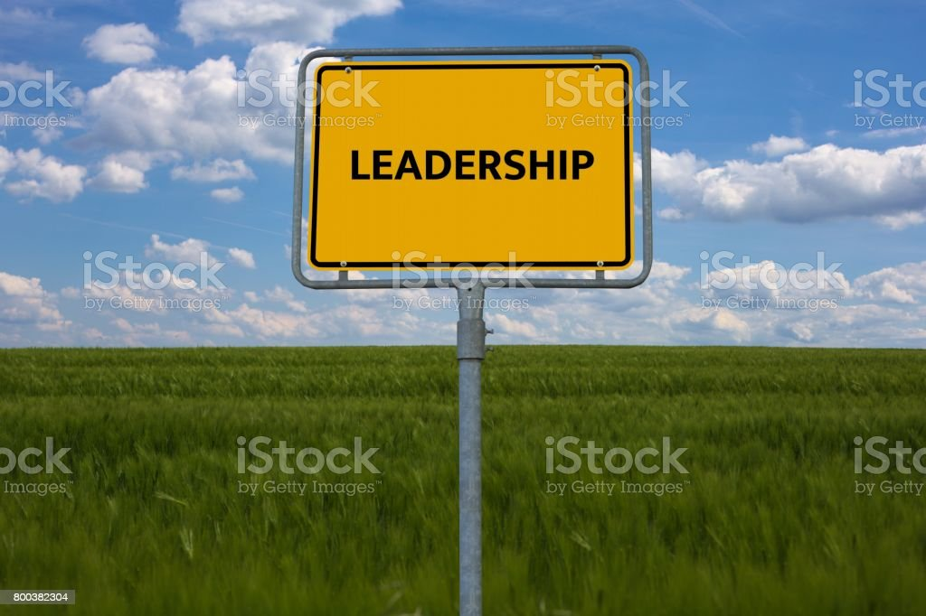LEADERSHIP - image with words associated with the topic IMPEACHMENT, word cloud, cube, letter, image, illustration stock photo