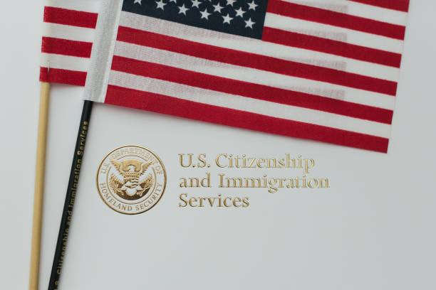 Immigration and Citizenship Gold Embossed Logo Immigration packed with American flags department of homeland security stock pictures, royalty-free photos & images