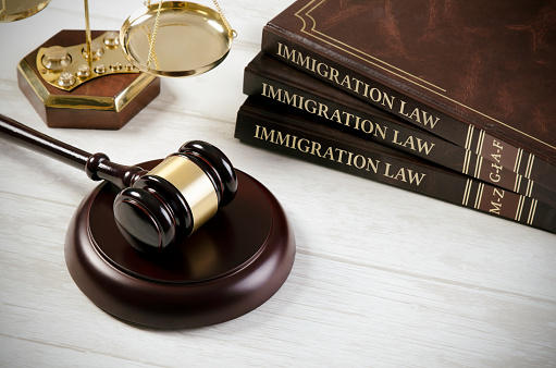 istock Immigration law book with judges gavel 850905664