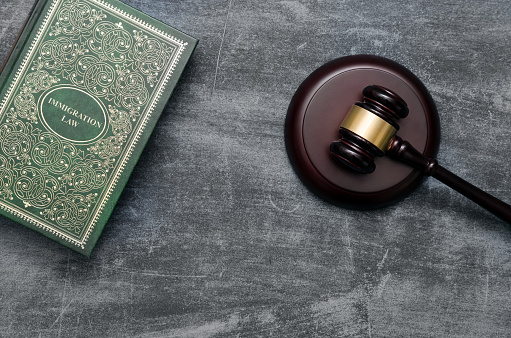 istock Immigration law book with judges gavel 854319300