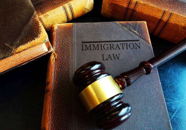 Immigration Law concept Immigration Law book with court gavel deportation stock pictures, royalty-free photos & images