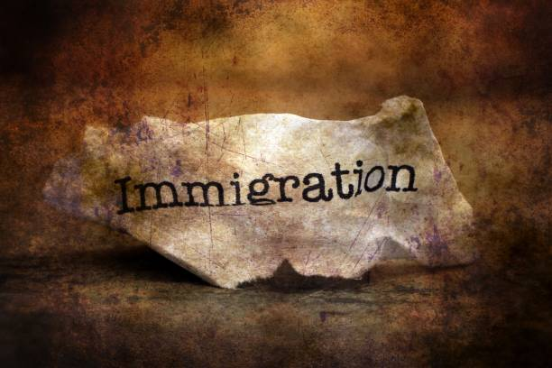 Immigration paper trash grunge concept picture id923476484?b=1&k=6&m=923476484&s=612x612&w=0&h=psrmstwhgaahe6btfqth0gxghfg7ujw87yg7qtvraqg=