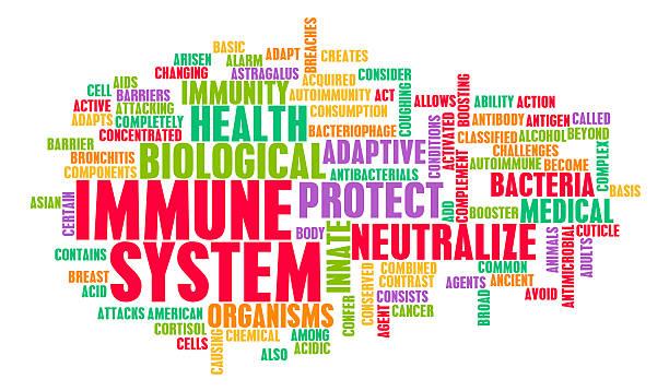 immune system - immunsystem stärken stock-fotos und bilder