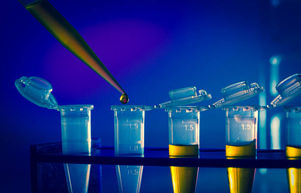 immunological research stock photo