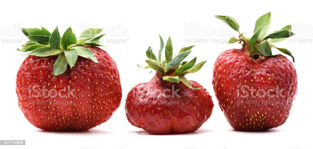 Imperfect organic sweet strawberries isolated stock photo