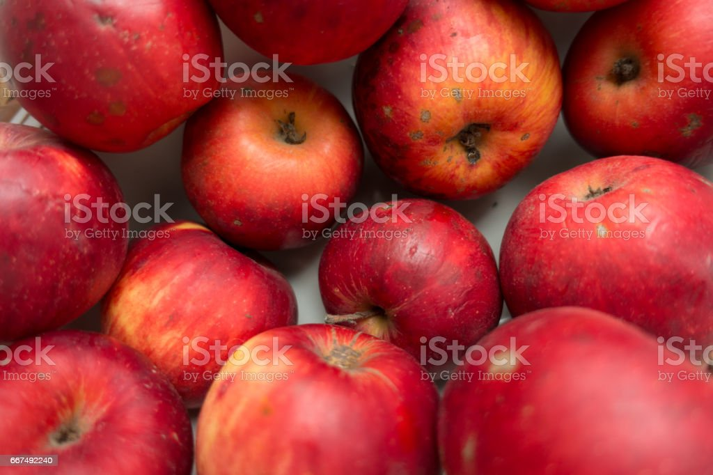 Imperfect red organic apples stock photo