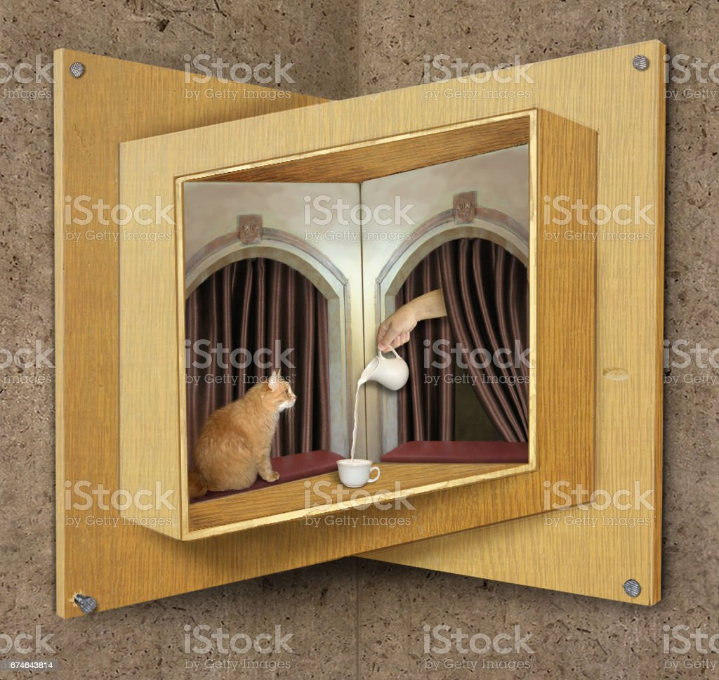 Impossible window with cat and milk stock photo