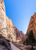 Virgin river runs through Zion National Park