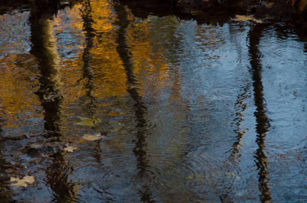 impressionist fall reflections - impressionist painting stock photos and pictures