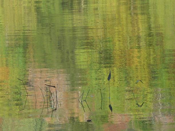 Impressionistic Water stock photo