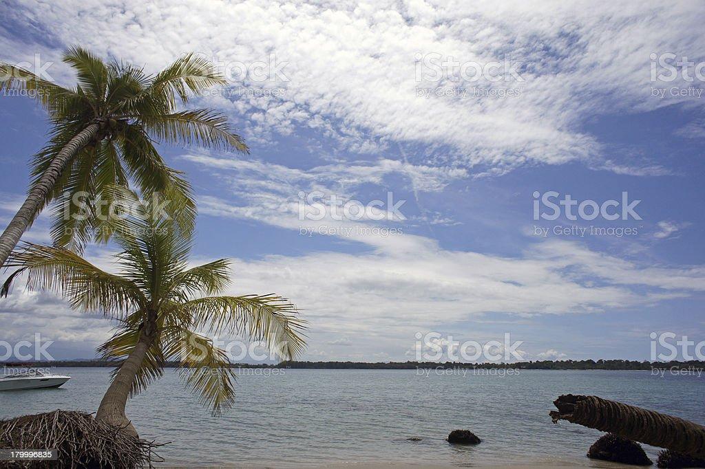 인상 메트로폴리스 코스타리카 royalty-free 스톡 사진