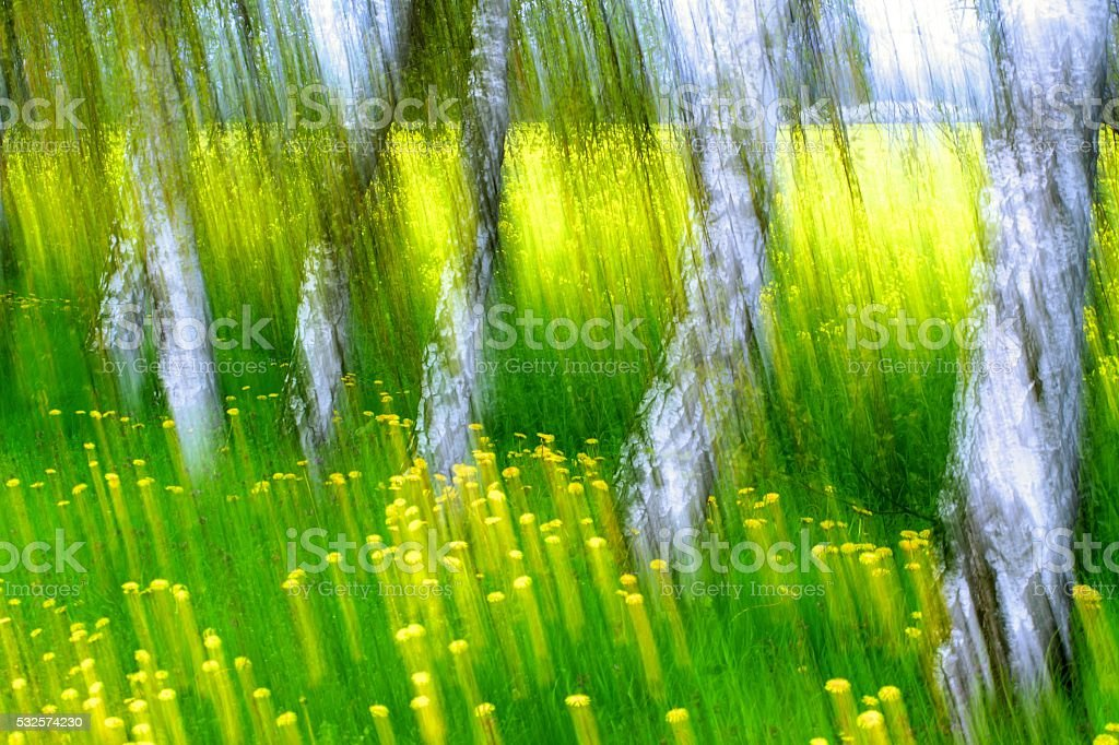 impression,spring, stock photo