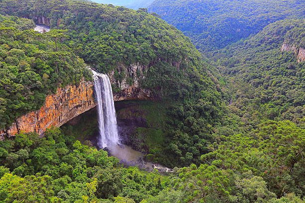impressive caracol falls, canela, rio grande do sul, brazil - south america travel stock photos and pictures