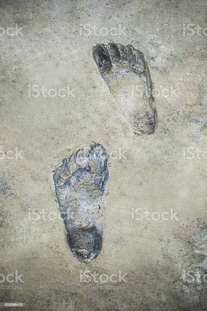 Imprint of a barefoot on mud stock photo