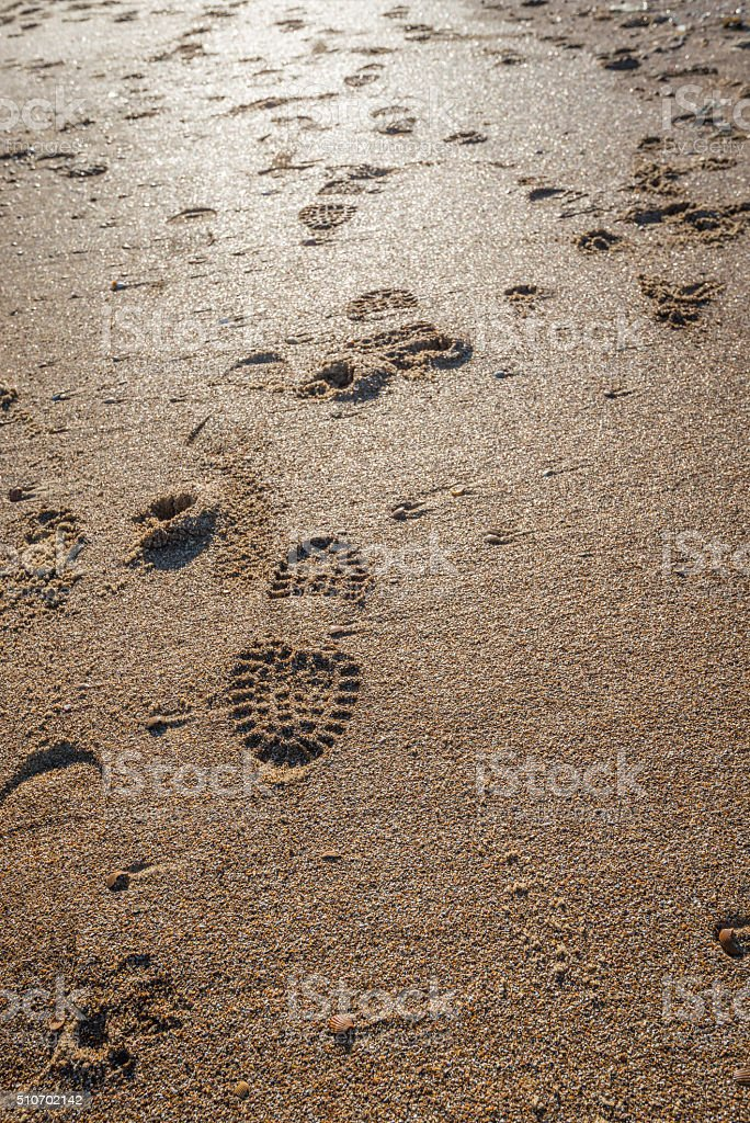 Imprints of shoe soles in the wet sand stock photo