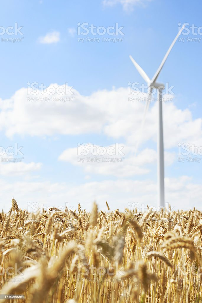 Improving efficiency in power production royalty-free stock photo