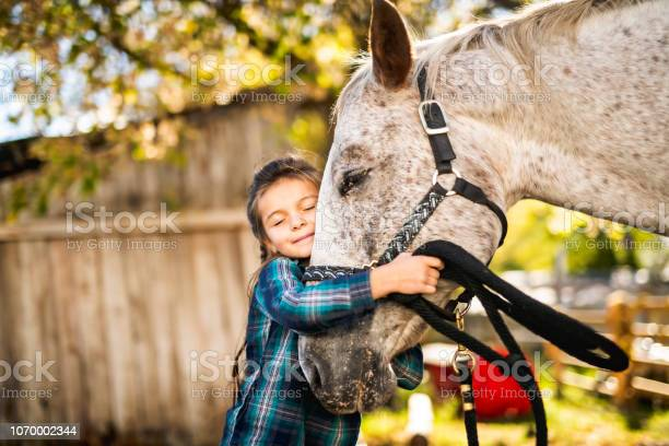 In a beautiful autumn season of a young girl and horse picture id1070002344?b=1&k=6&m=1070002344&s=612x612&h=hhwklnewctpqcl6r 9dkgm0phjop7th2kefgeqrpmy8=