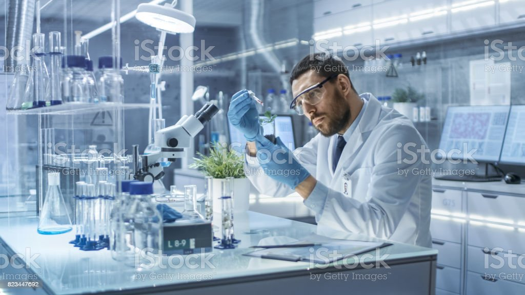 In a Modern Laboratory Research Scientist Conducts Experiments by Synthesising Compounds with use of Dropper and Plant in a Test Tube. stock photo