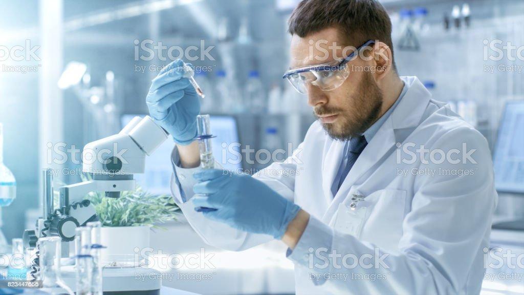 En un moderno laboratorio científico realiza experimentos de sintetizar compuestos con uso del cuentagotas y de planta en un tubo de ensayo. - Foto de stock de ADN libre de derechos