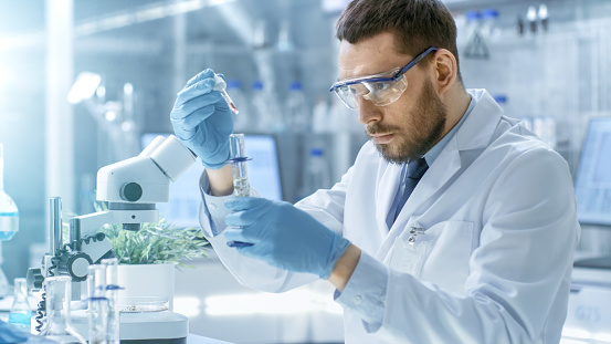 In a Modern Laboratory Scientist Conducts Experiments by Synthesising Compounds with use of Dropper and Plant in a Test Tube.