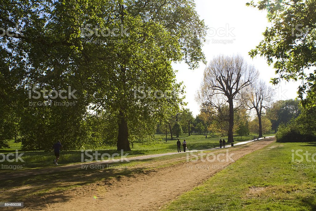 In a park royalty-free stock photo