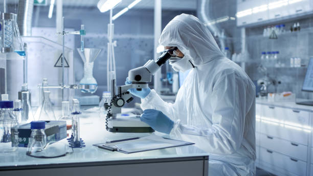 In a Secure High Level Research Laboratory Scientist in a Coverall Examines Petri Dish Under Microscope. stock photo
